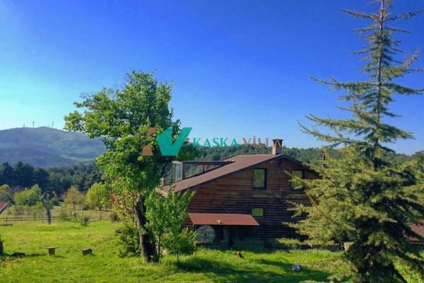 Dağ Evi Sekoya