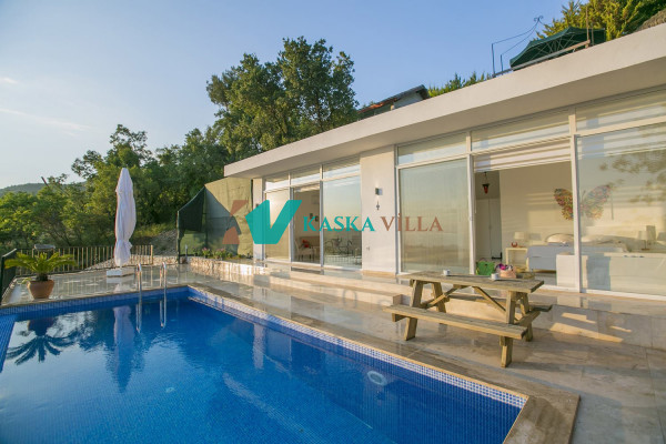Villa Şakir