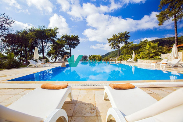 Villa Serenity