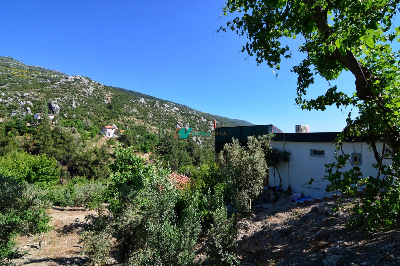 Villa Bal