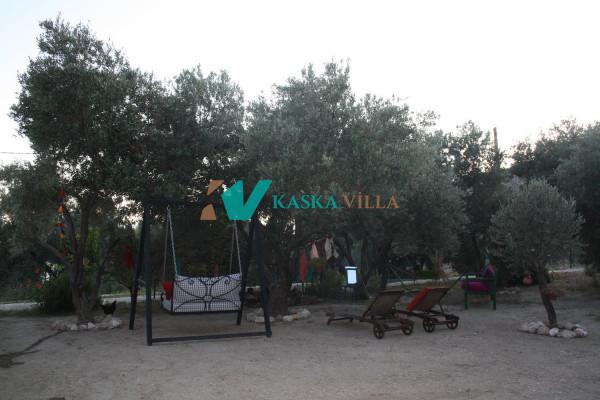 Villa Shavilla