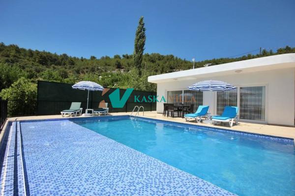 Villa Heves