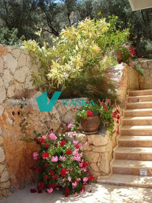 Villa Kaleli